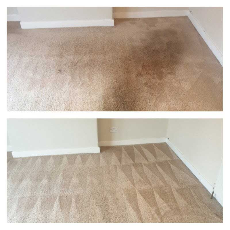 glasgow-carpet-cleaner