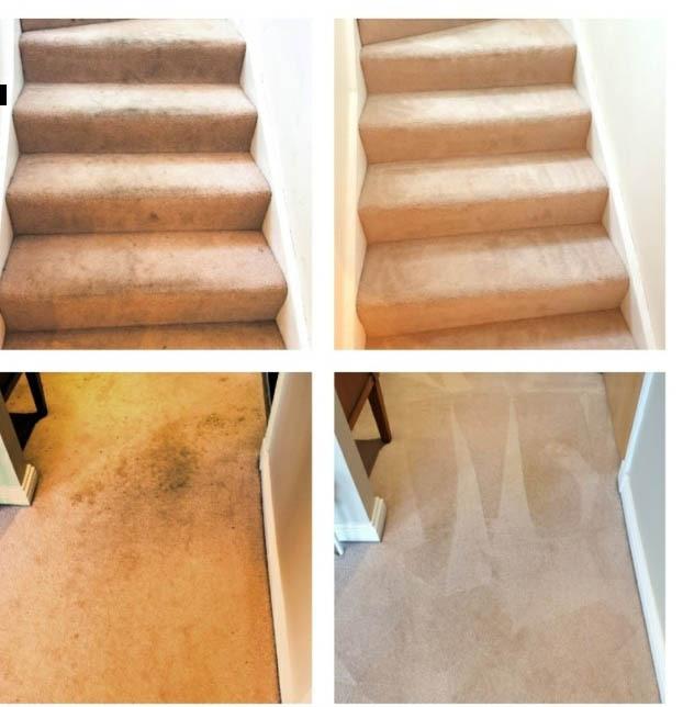 carpet-cleaning-giffnock