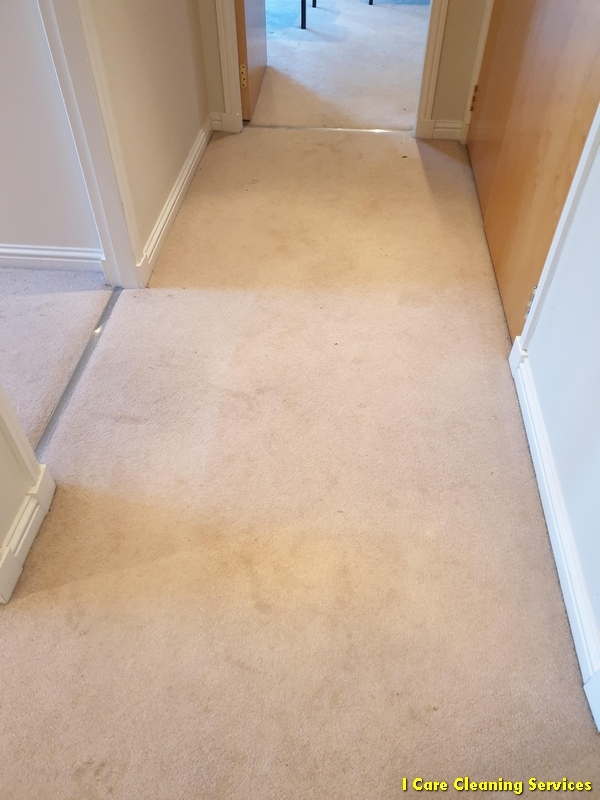 carpet-cleaning-bishopbriggs