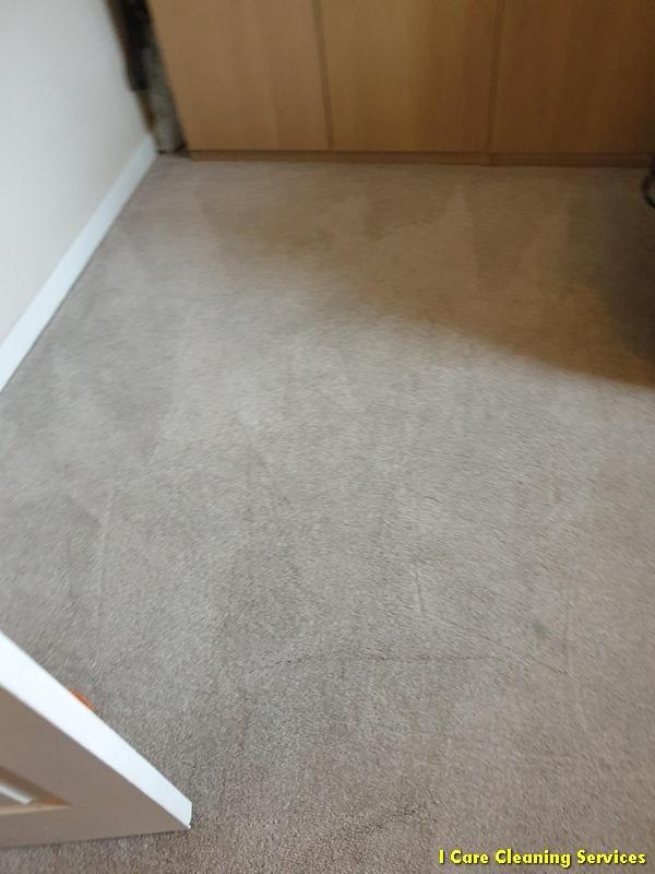 carpet-cleaning-hamilton