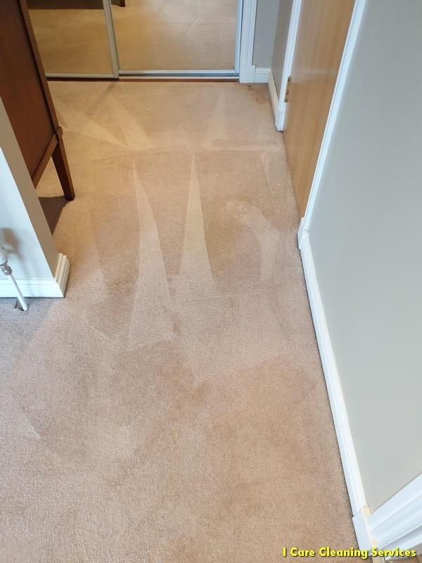 carpet-cleaning-milngavie