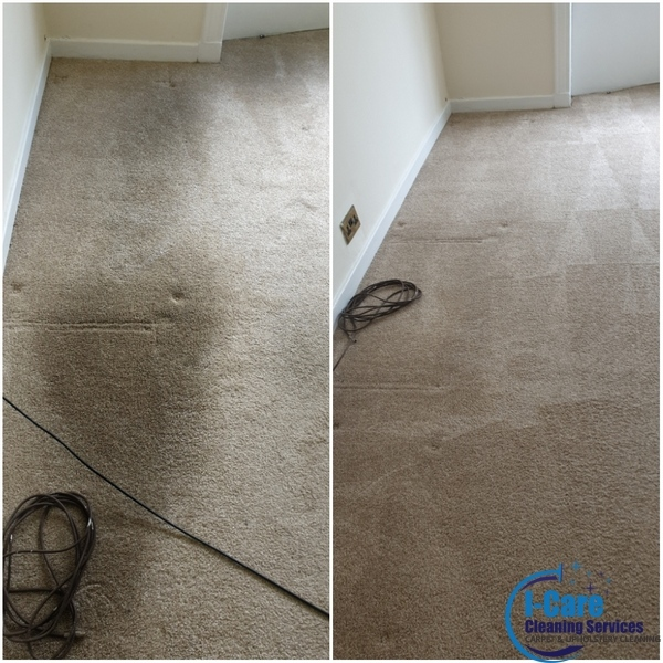 carpet-cleaning-newton-mearns